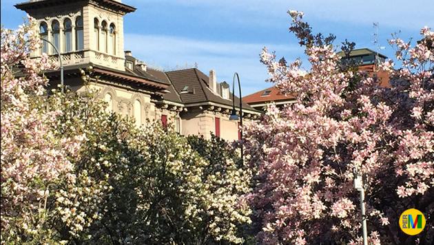 Hotel Via Tommaseo Padova